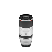 ZOOM CANON 100-500/4,5-7,1 L IS USM RF
